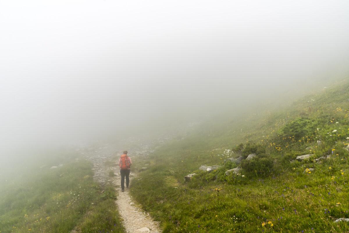 Alpenpässeweg Alp Bovine
