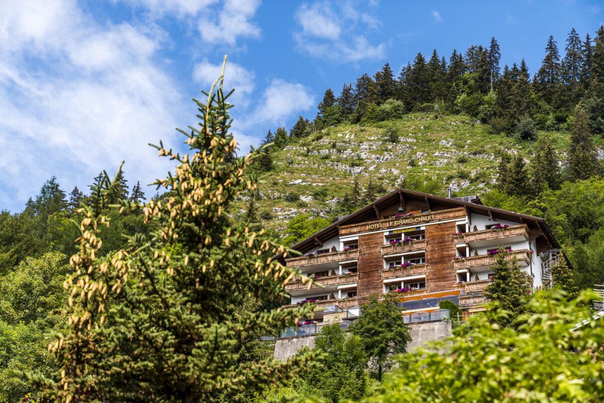 Le Grand Chalet Hotel Leysin