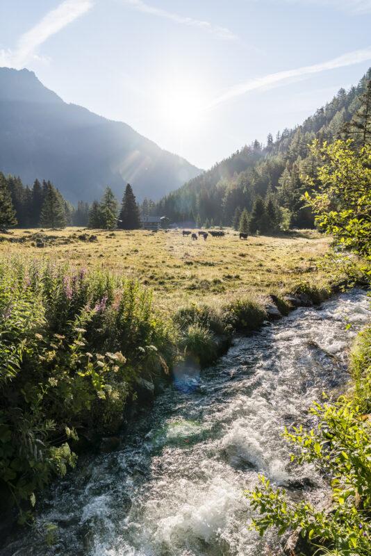 Val d'Arpette Wallis