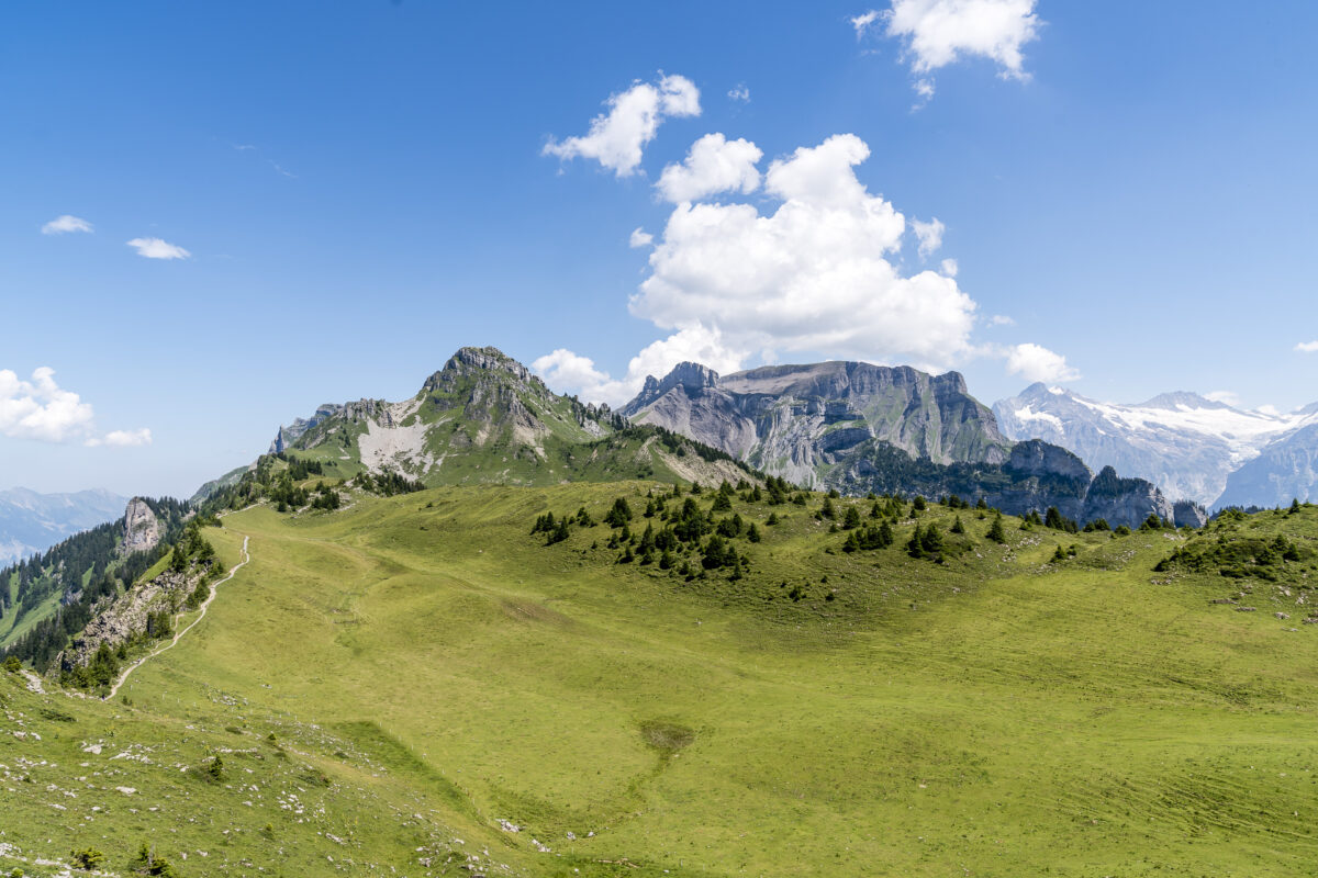 Schynige Platte Alp