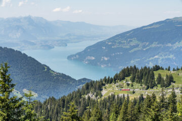 Gemütliches Sonntagswandern: Panoramaweg Schynige Platte