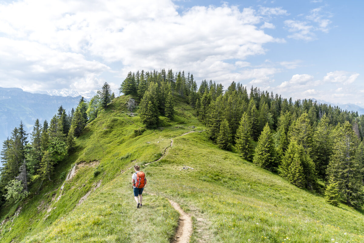 Wanderung Augstmatthorn Harder Kulm Interlaken