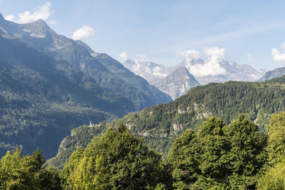Panorama Ossolatal