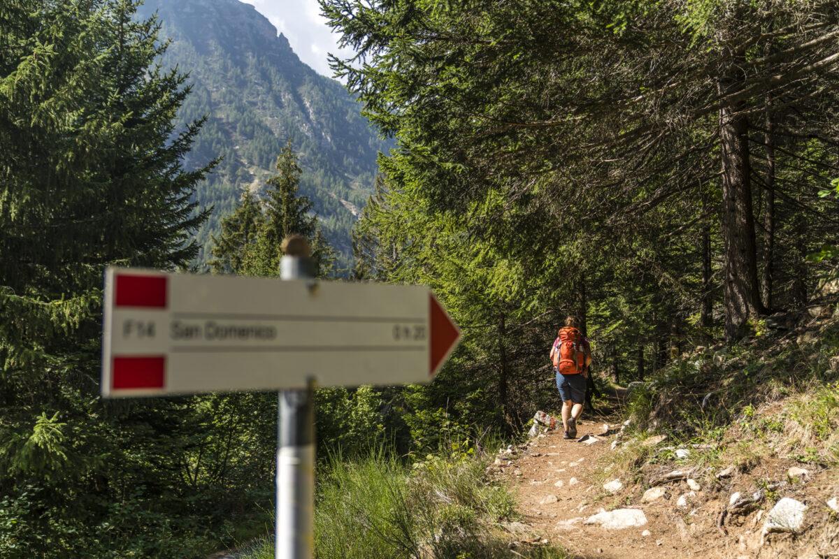 Wanderwege San Domenico