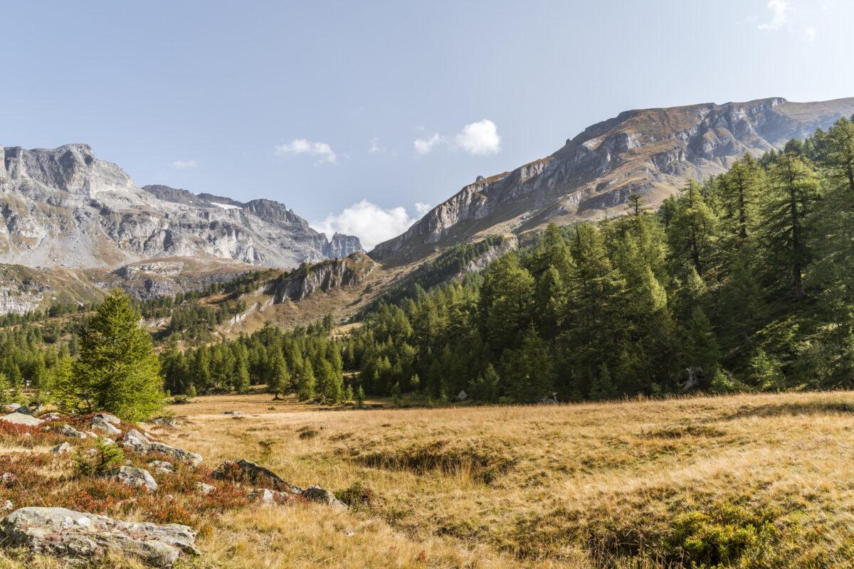 Naturpark Alpe Veglia Herbst