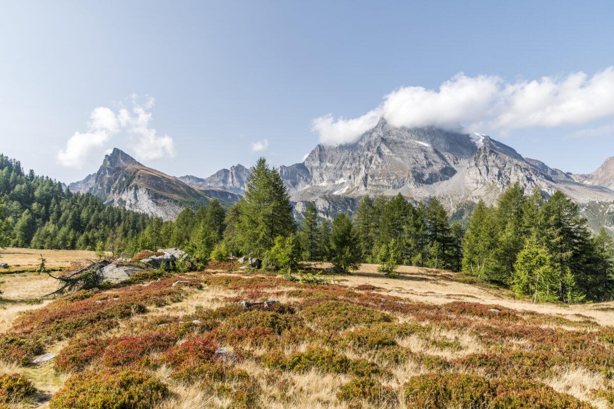 Alpe Veglia Panorama