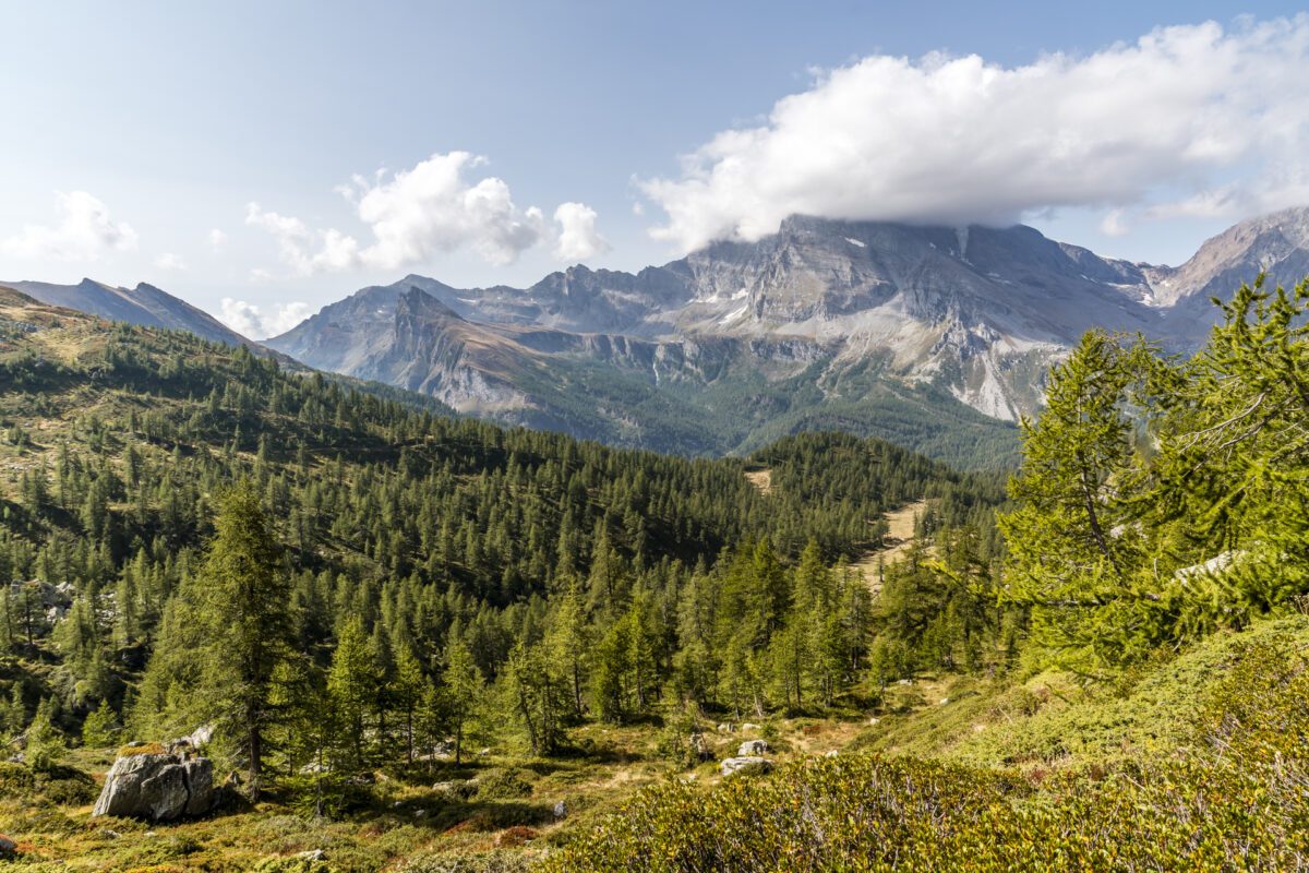 Aufstieg Alpe Veglia Lago Bianco