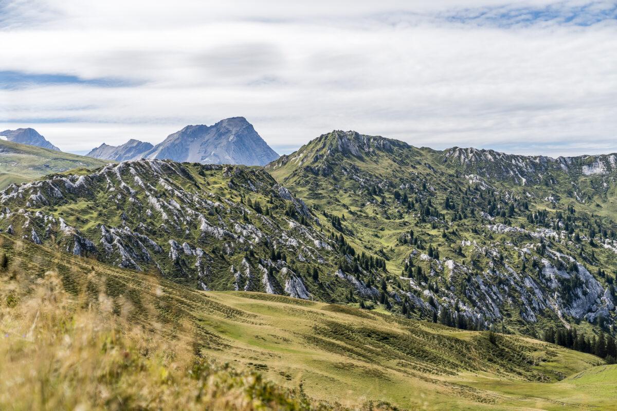 Leiterli Lenk Alp Panorama