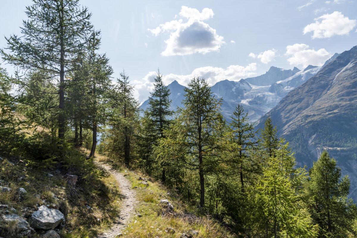 Wandern entlang dem Europaweg