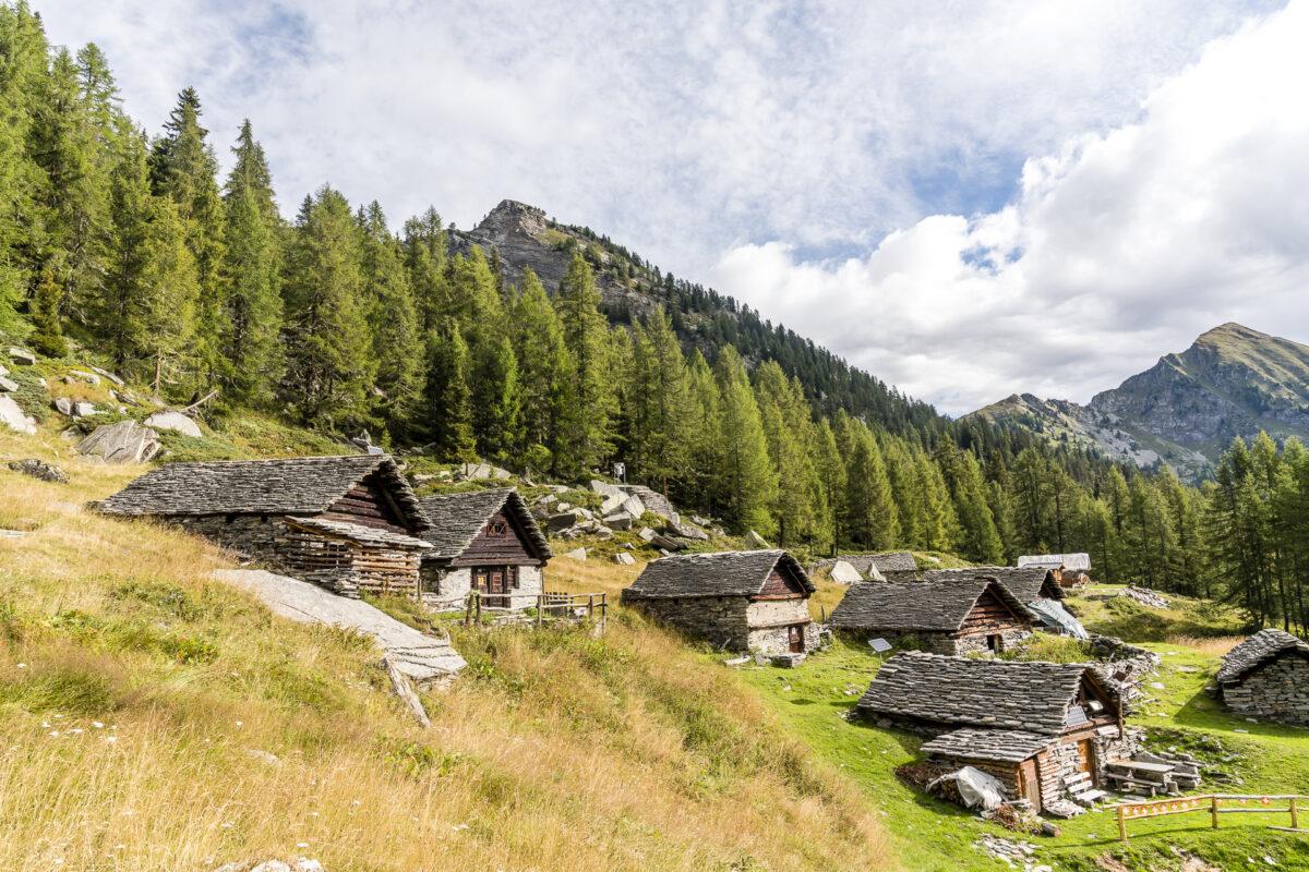 Cimalmotto Alpe die Quadrello