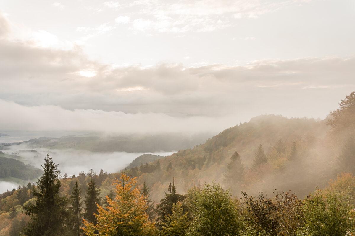 Albishorn Morgenstimmung