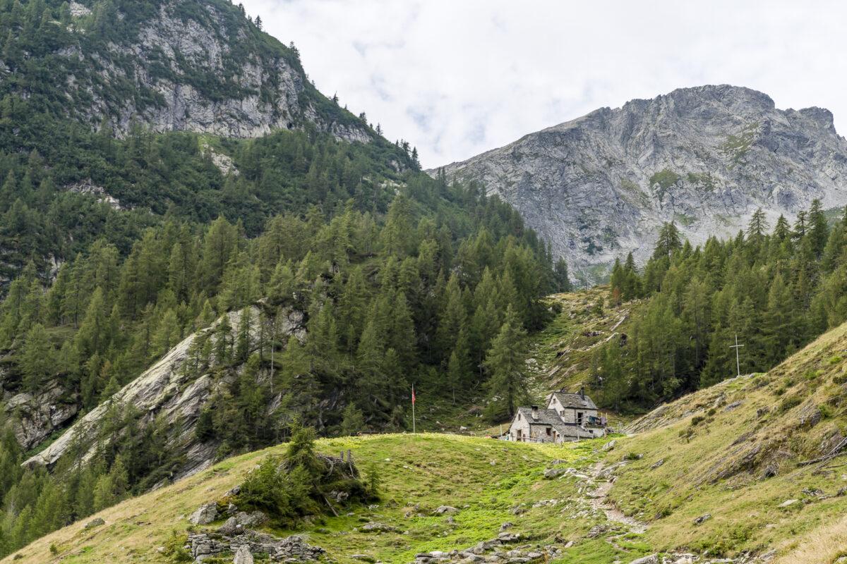 Alpe di Sfii Tessin