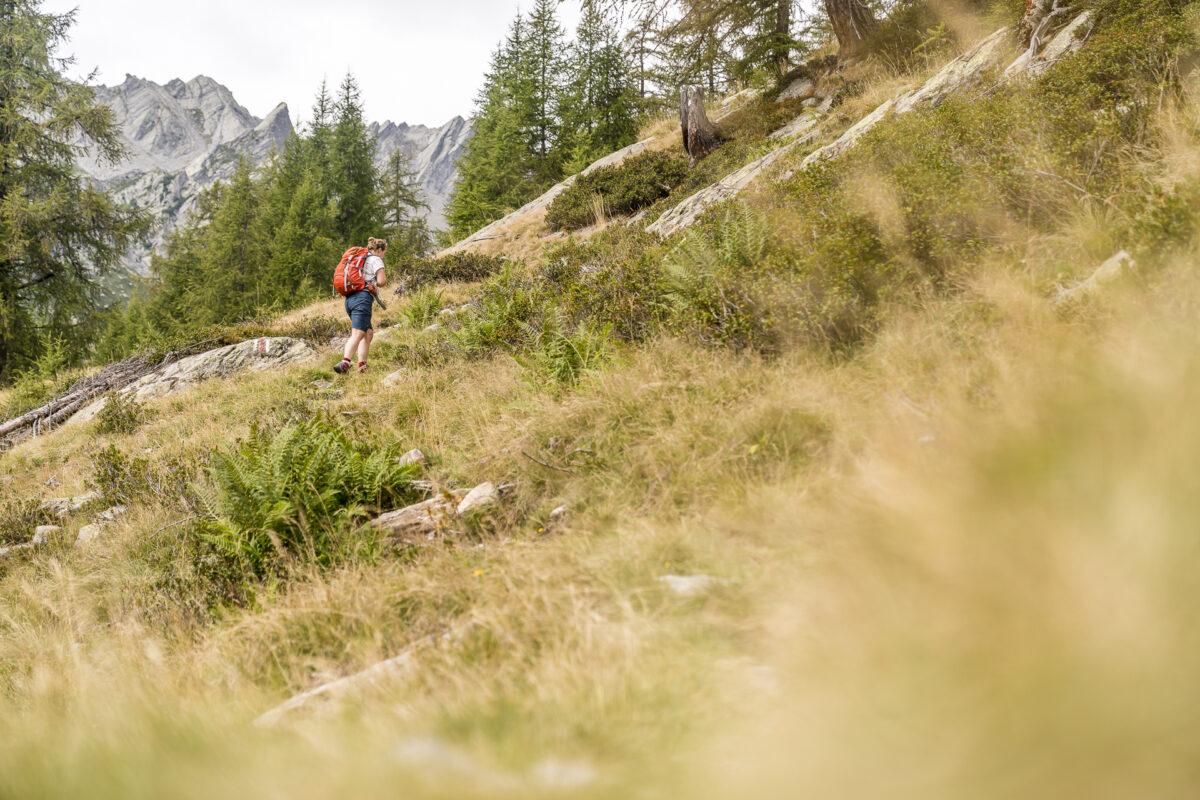 Alpe die Sfii Aufstieg
