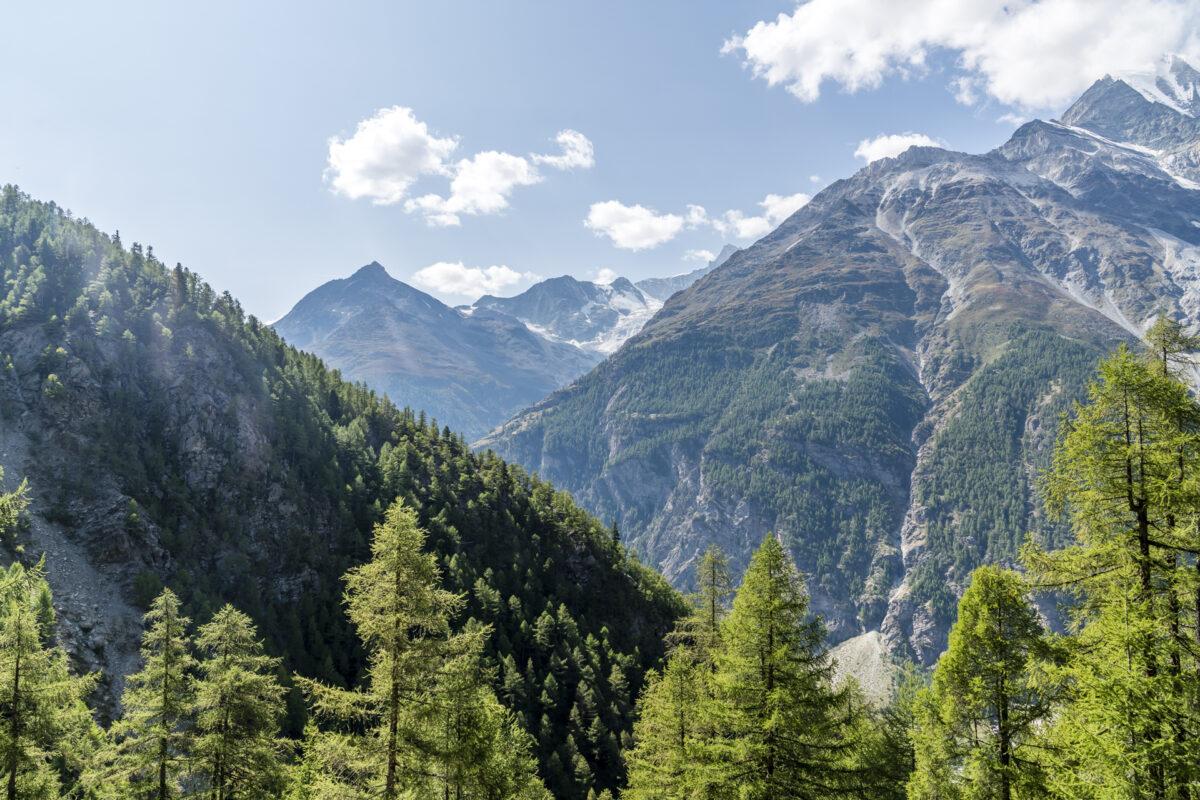 Ausblick Randa Zermatt