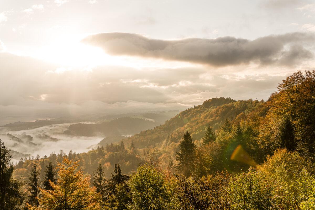 Albishorn Sonnenaufgang