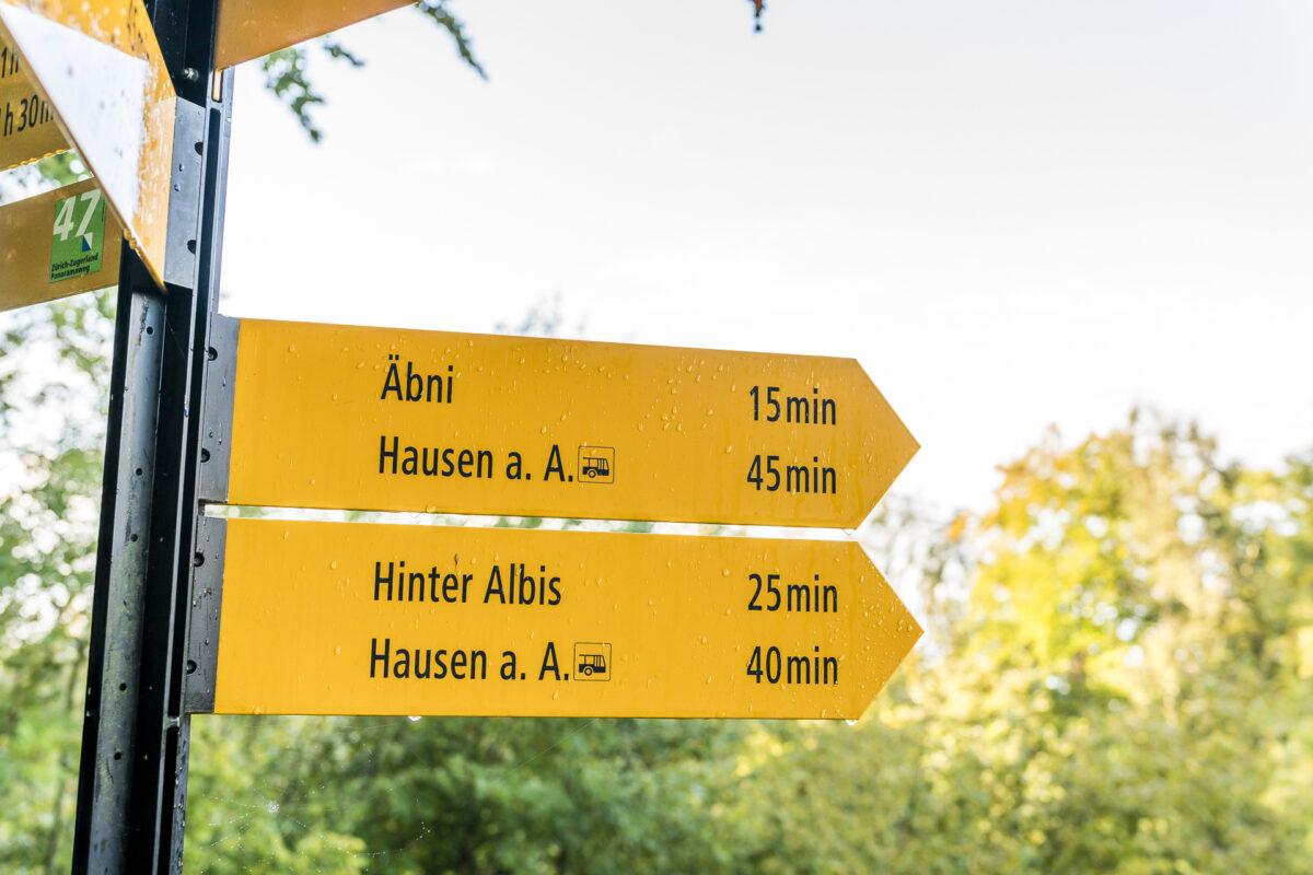 Wanderung Albishorn Türlersee