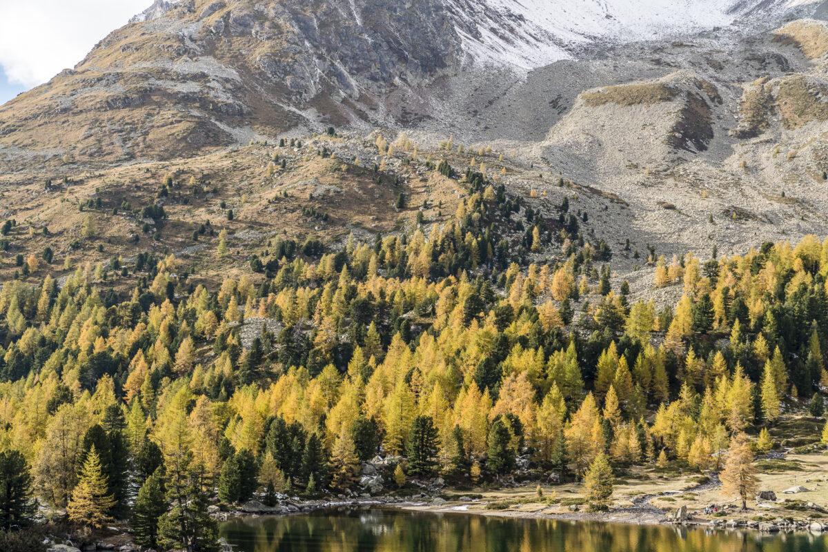 Herbstfarben im Puschlav