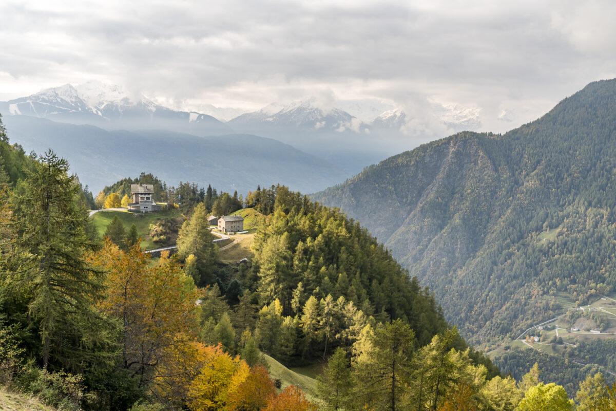 Herbst Via Valtellina