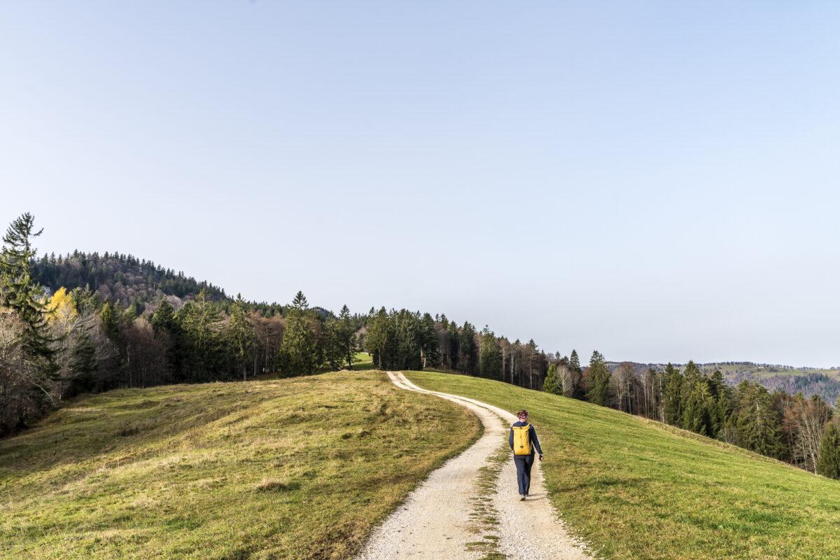 Jura Höhenweg Grenchenberg
