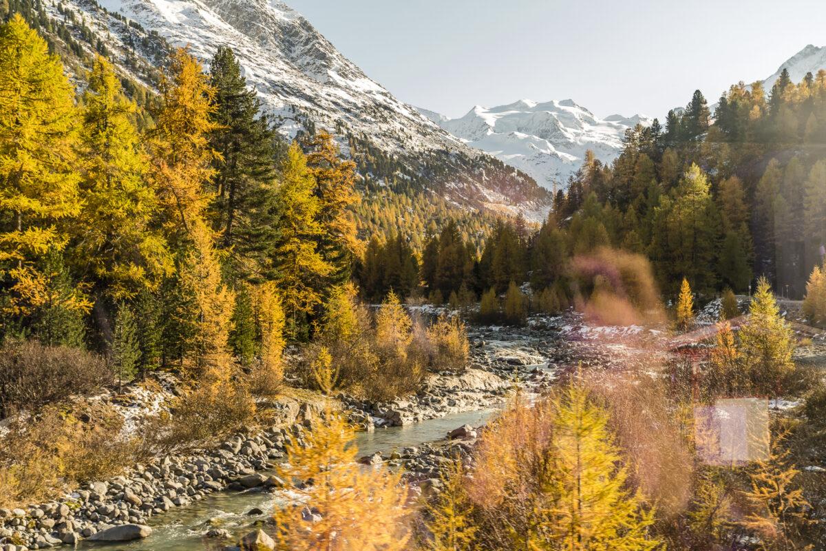 RHB Zugfahrt im Herbst