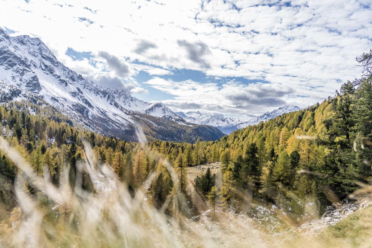 Herbst im Val da Camp Puschlav