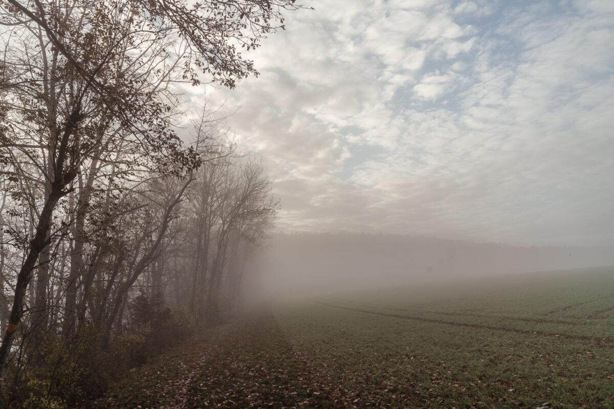 Reiat Nebel