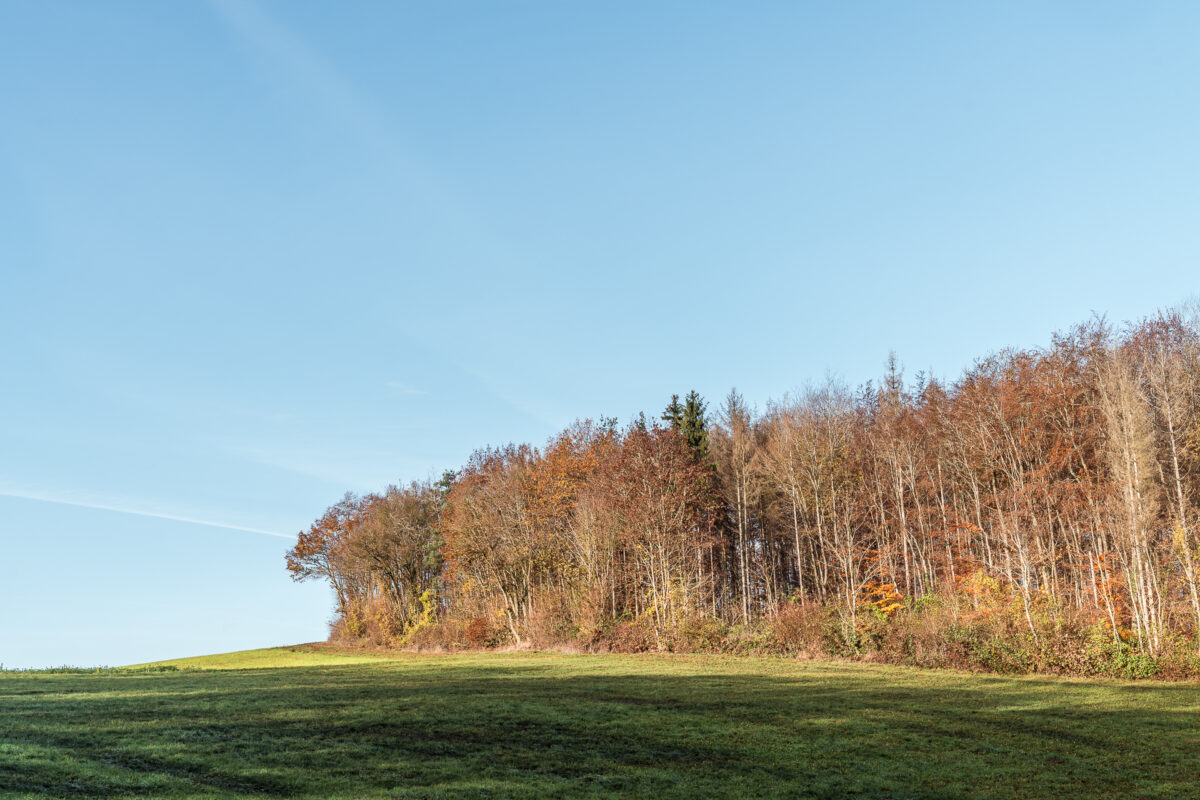 Schaffhauserland im Herbst