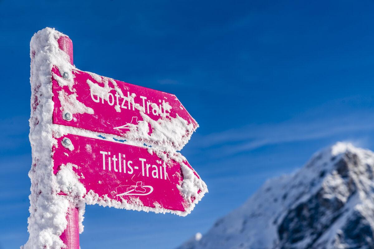 Grotzli Trail und Titlis Trail