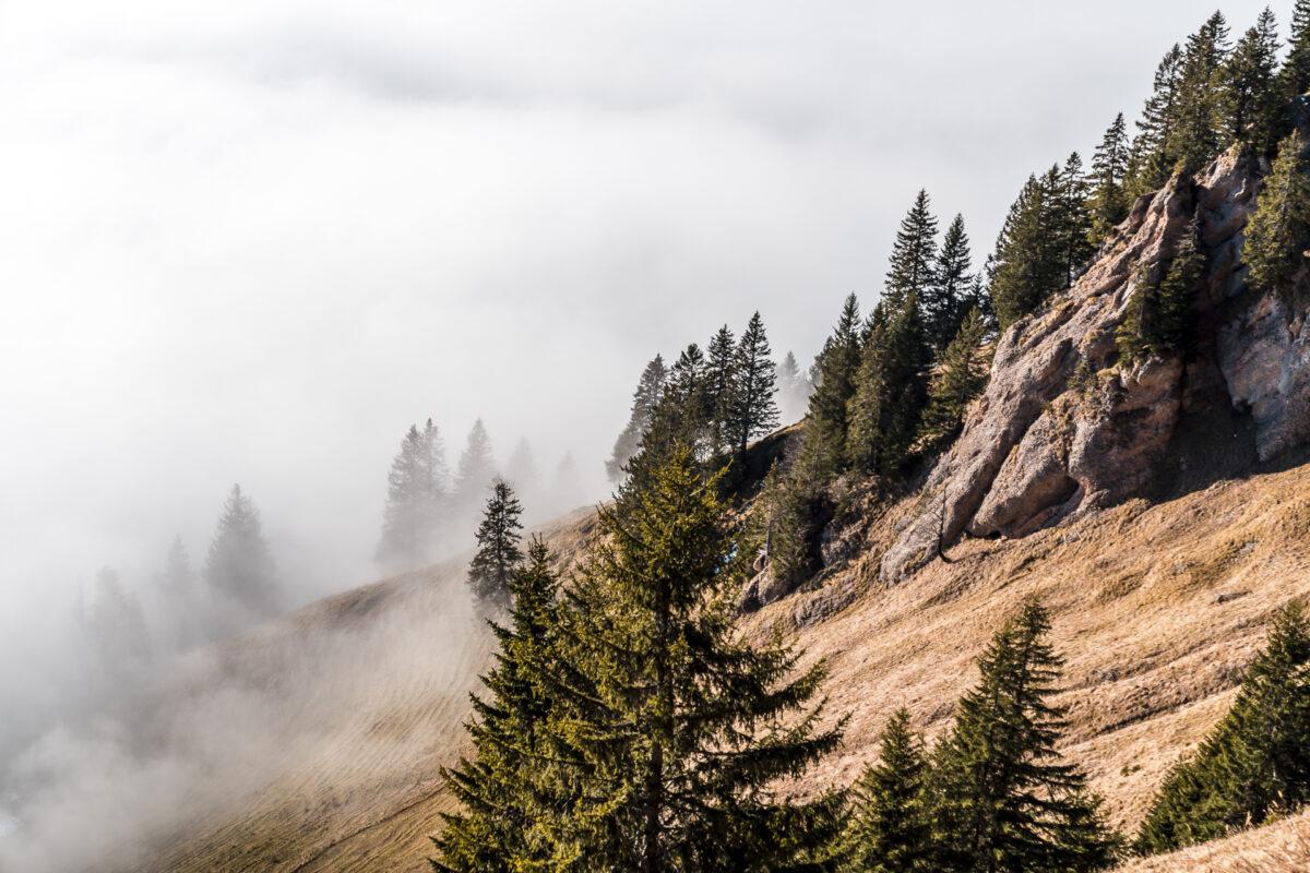 Nebelmeer Glarnerland