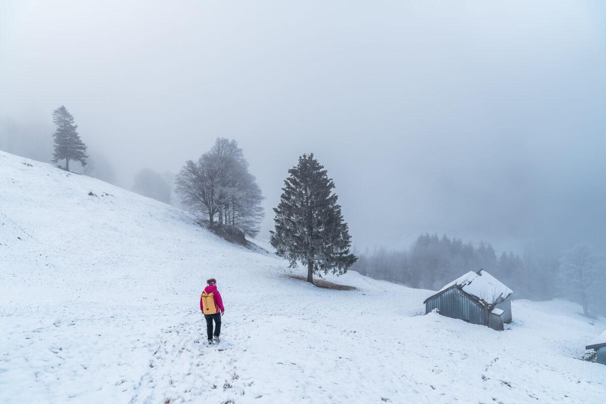 Hirzli Rundweg Winter