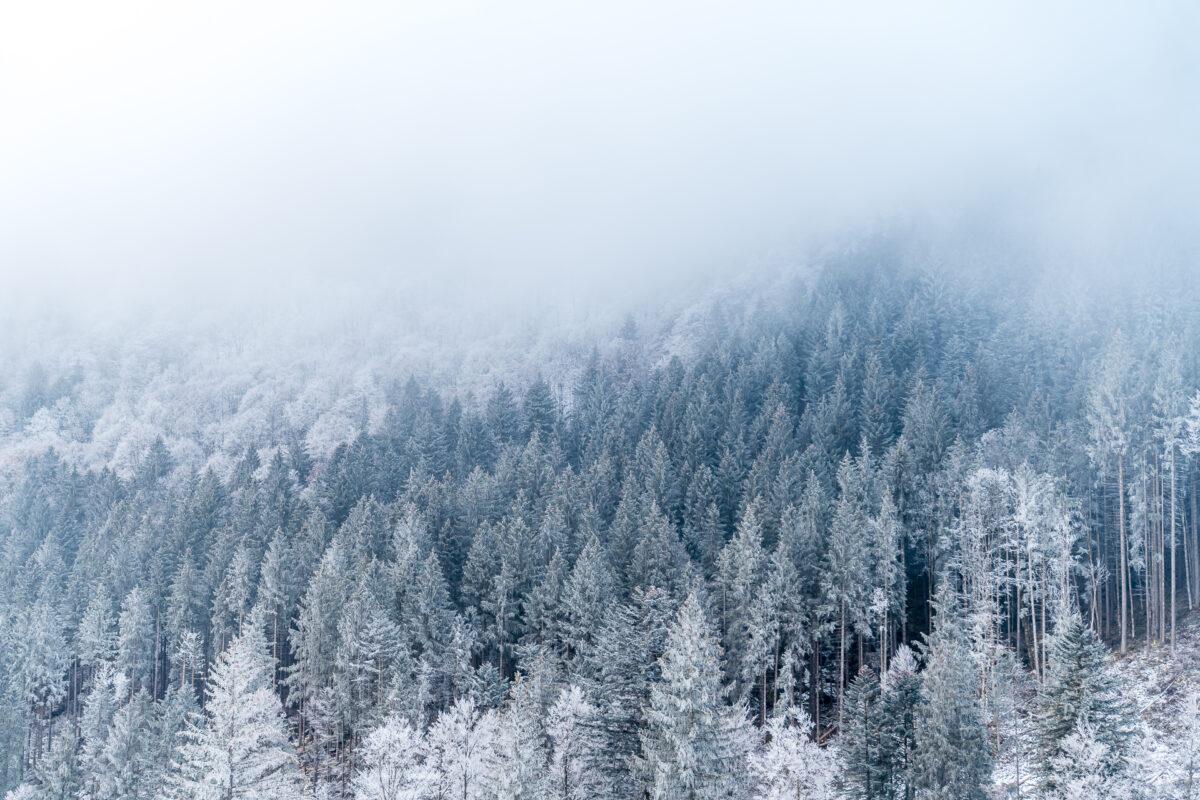 Frost im Glarnerland