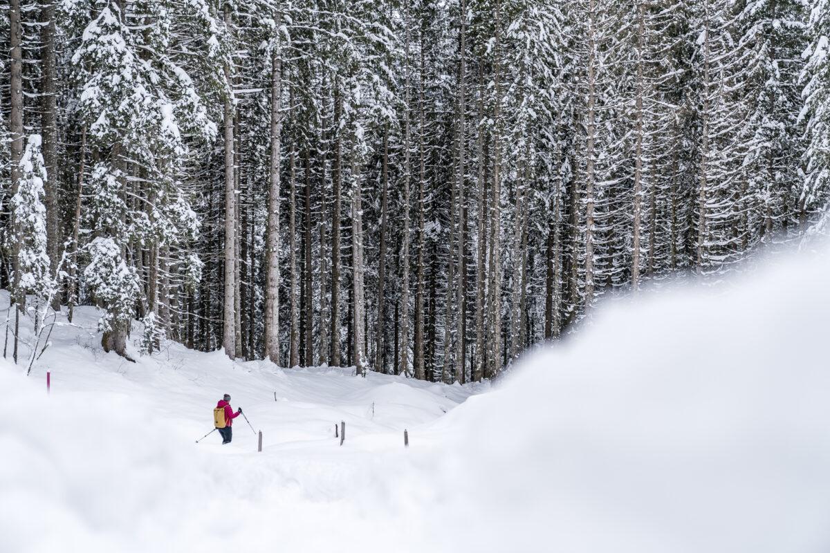 Schneeschuhtrail Gerschniealp Engelberg