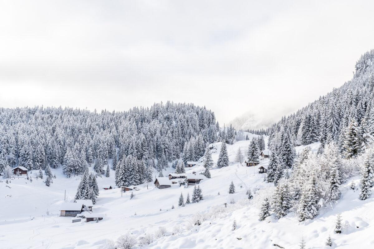 Arni Silenen im Winter