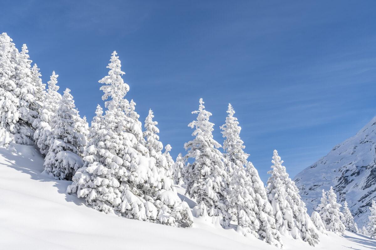 Winter auf der Fürenalp