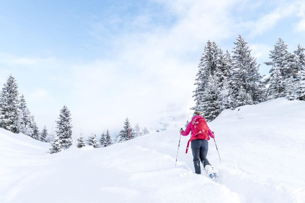 Schneeschuhwanderung Arni
