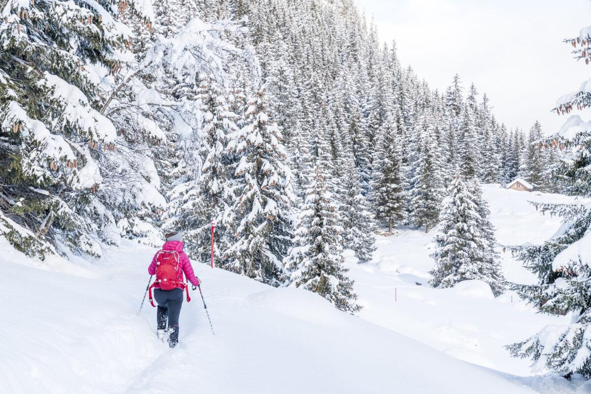 Arnisee Trail Schneeschuhewanderung