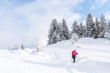 Arnisee Trail - tolle Einsteiger Schneeschuhwanderung
