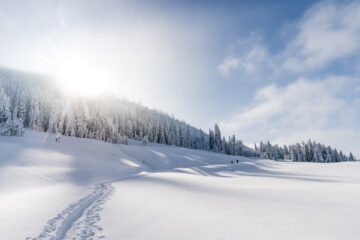 Schneeschuhwandern bei Sattel-Hochstuckli: Biberegg-Herrenboden-Trail