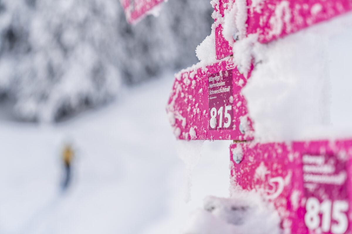 Schneeschuhtrails bei Sattel-Hochstuckli