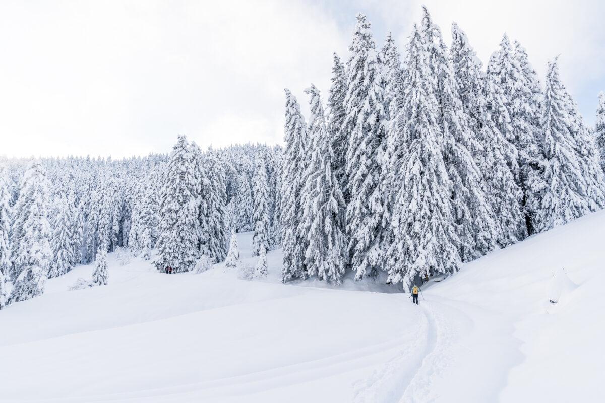 Schneeschuhtrail Biberegg Banegg