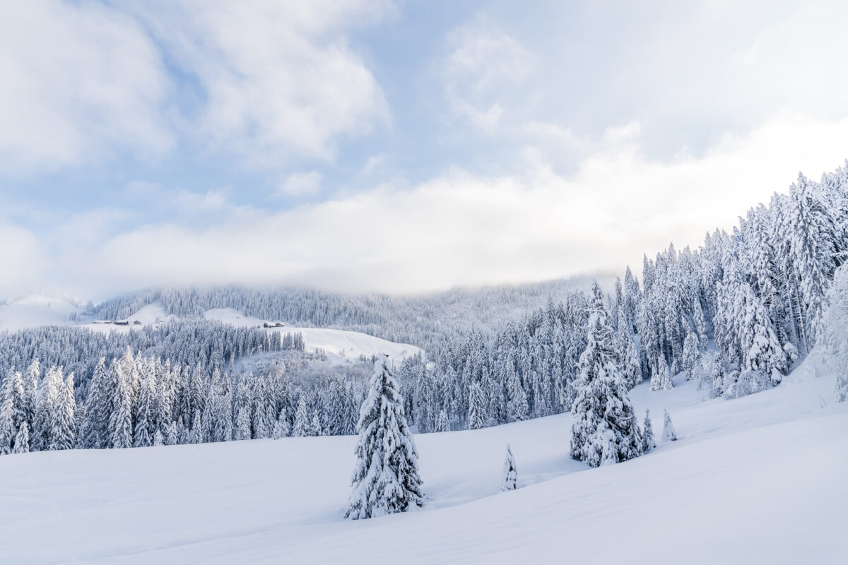 Winter in Biberegg Rothenturm