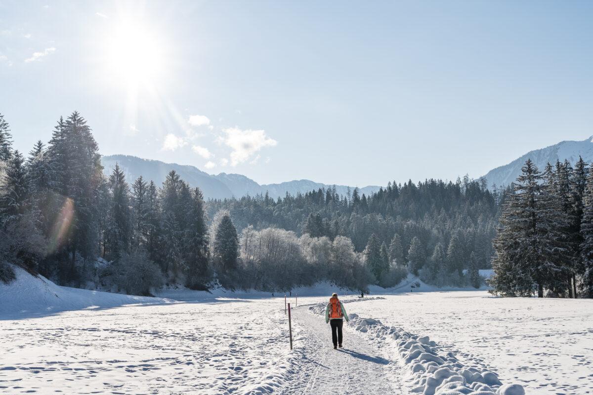 Winterwanderung Trin Flims