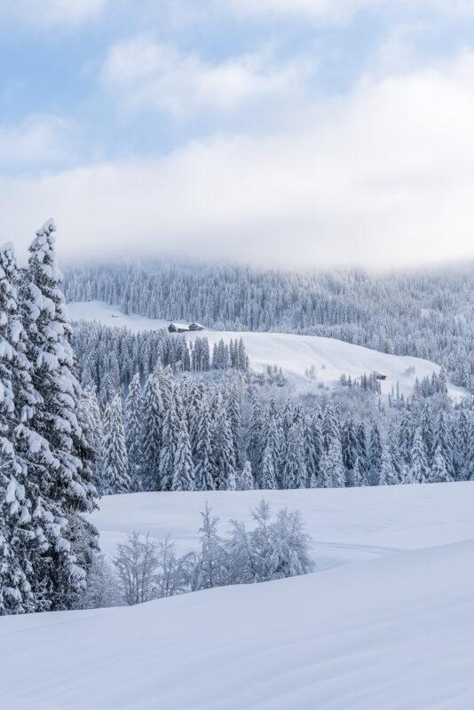Biberegg Sattel Winter