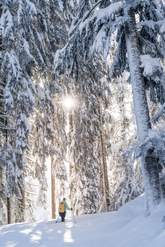Biberegg Schneeschuhtrail