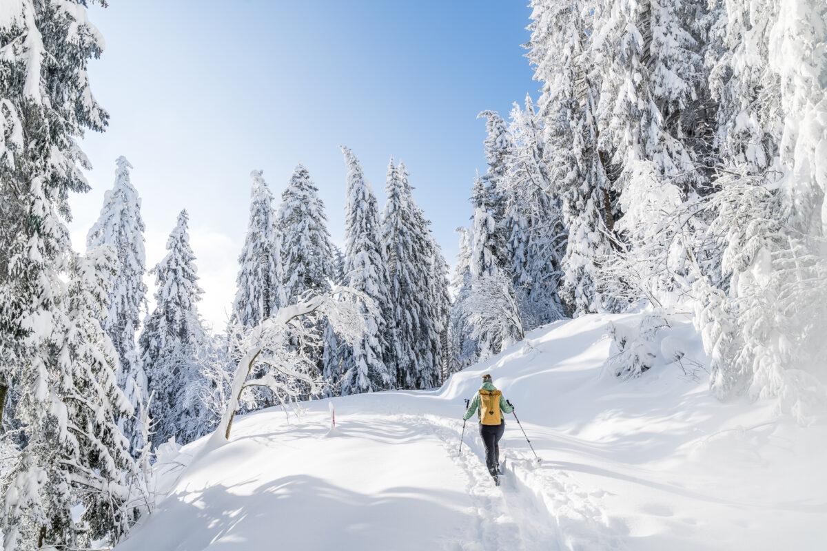 Schneeschuhwandern Biberegg Rothenturm