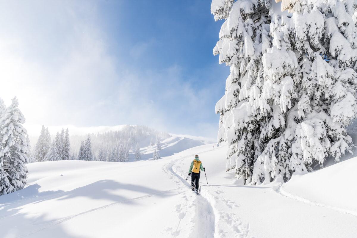 Biberegg Schneeschuhwanderung