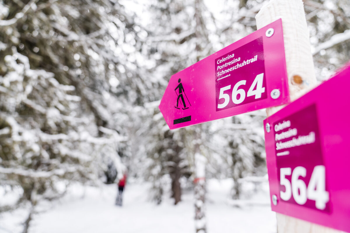 Schneeschuhtrail Celerina-Pontresina
