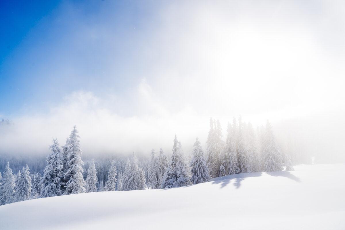 Banegg Herrenboden Sattel Winter