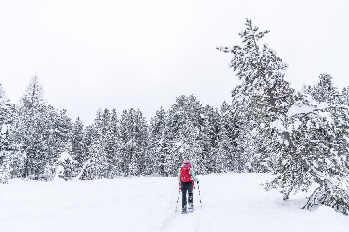 Schneeschuhtrail Stazerwald
