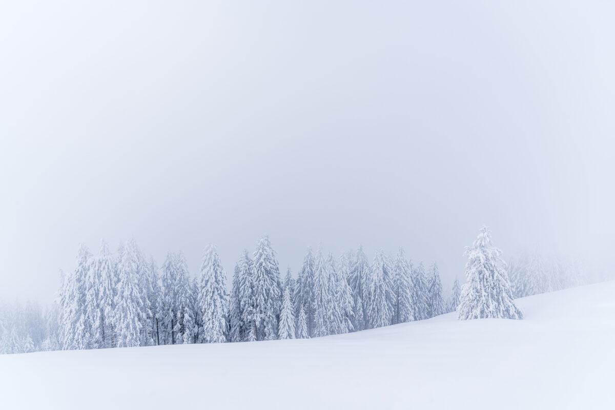 Winter Sattel Hochstuckli